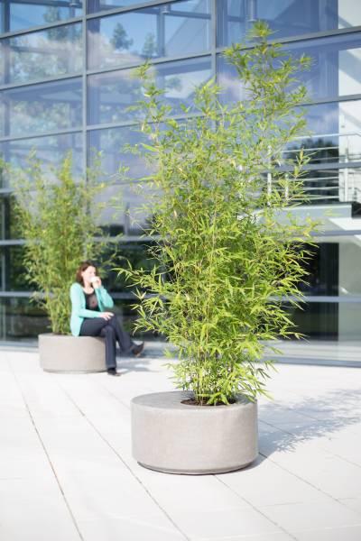 DIVISION Pflanzobjekt rund - natur-beton