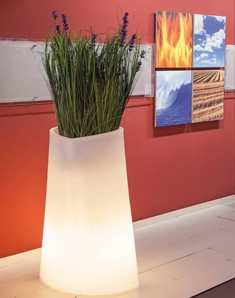 Design Pflanzgefäß beleuchtet vor roter Wand